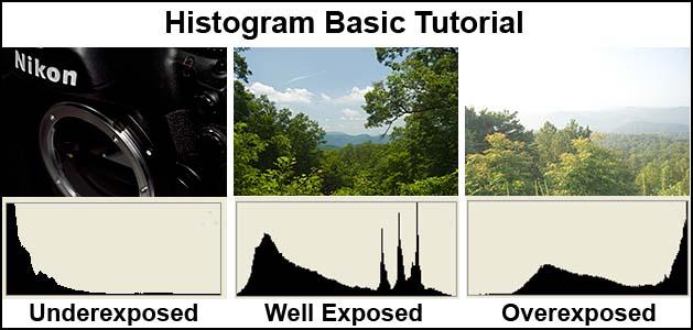 HistogramBasic